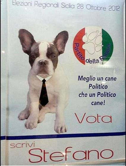 20121010203405-stefano-el-perro-canditato.jpg