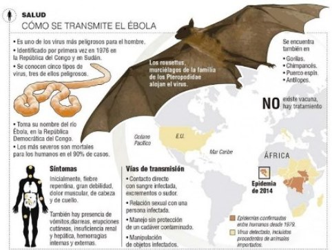 20141007024050-ebola-copia.jpg